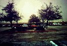 hail1.jpg (38754 bytes)
